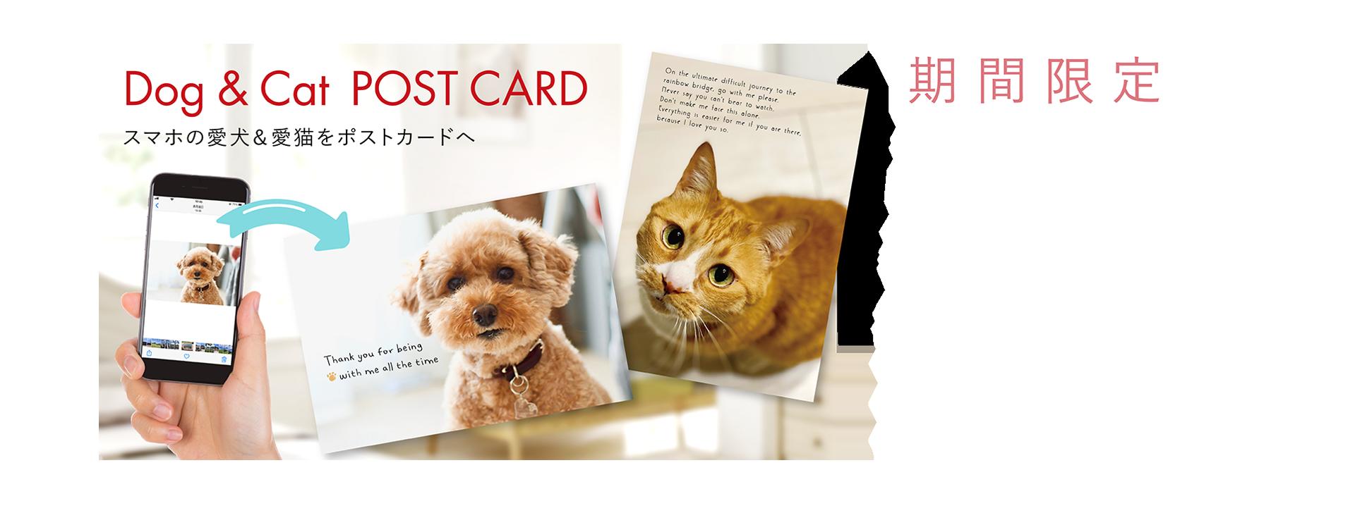 ペットポストカード